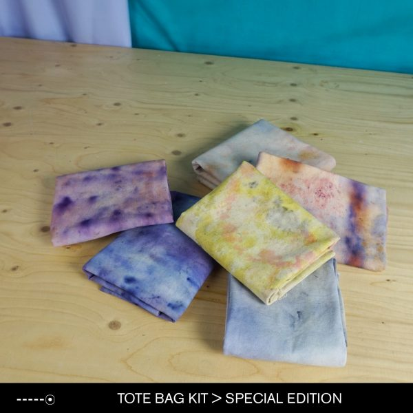 ToteBagKitSpecialEdition5